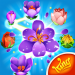 Blossom Blast Saga 77.0.3 APK MOD Unlimited Money for android
