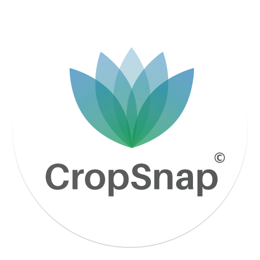 CropSnap 1.3.9 APK Download for android