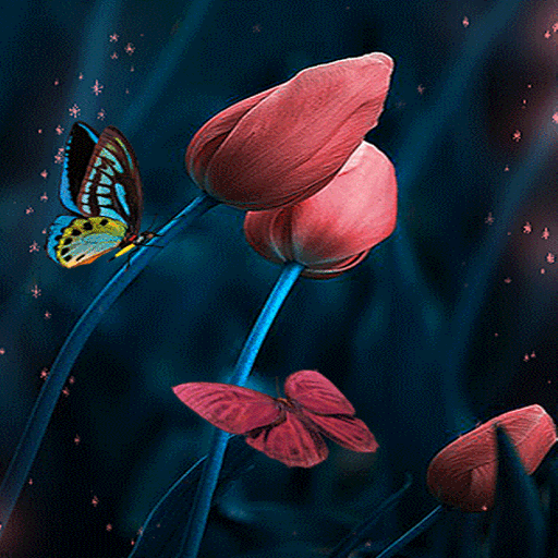 Tulip Flowers Butterfly LWP 3 APK Download for android